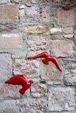 Röda fåglar på stenväggen Arkivfoto
