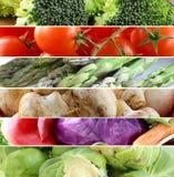 Röda för collage olika och gröna grönsaker Royaltyfri Bild
