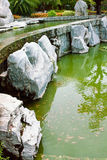 Röda fiskar i det gröna damm Arkivbild