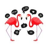 Röda flamingo med anförande bubblar symboler också vektor för coreldrawillustration Pratstundballonger Roliga meddelanden Hello ö Arkivbild