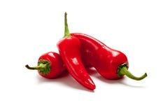 röda fresno varma peppar Royaltyfri Bild