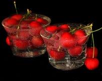 Röda frukter Arkivbild