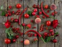 röda frukter, grönsaker och blommor royaltyfria bilder