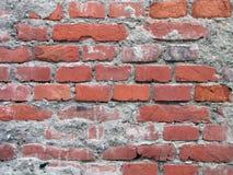 Röda gamla tegelstenar med cementväggbakgrund Arkivfoto