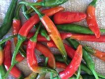 Röda & gröna chili Royaltyfria Foton