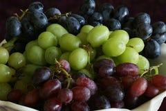 Röda & gröna druvor för lilor, Arkivbilder