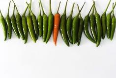 röda gröna varma peppar för chili Royaltyfria Foton