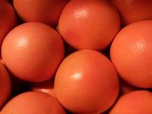 Röda grapefrukter Royaltyfri Fotografi