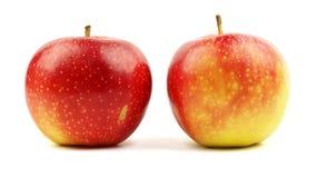 Röda gula äpplen som isoleras på vit Royaltyfria Foton