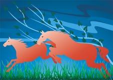 röda hästar Arkivbilder