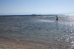 Röda havet Fotografering för Bildbyråer
