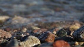 Röda havet tvättar stenen arkivfilmer