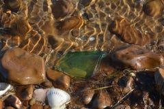 Röda havetkiselstenar Royaltyfria Bilder