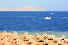 Röda havetkust. Royaltyfri Fotografi