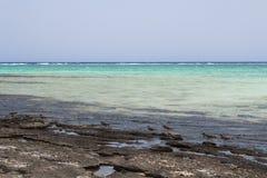 Röda havetstrandRöda havet Egypten Royaltyfria Foton