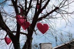 Röda hjärtor hänger på ett träd utan sidor mot himlen arkivbild