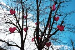 Röda hjärtor hänger på ett träd utan sidor mot himlen royaltyfri foto