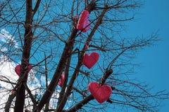 Röda hjärtor hänger på ett träd utan sidor mot himlen royaltyfria foton