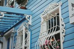 röda hus för grå färger för gräsplanblåttguling i Istanbul Royaltyfri Fotografi