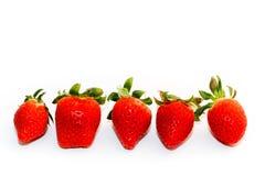 Röda jordgubbar av olika former med gröna sidor, sida - förbi - sida som isoleras på en sömlös vit bakgrund royaltyfria foton