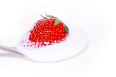 Röda jordgubbar i kräm på en sked Royaltyfri Foto