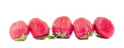 Röda jordgubbar med gröna sidor som isoleras Arkivbilder