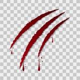 Röda jordluckrare med blod på transperent bakgrund för allhelgonaafton vektor stock illustrationer