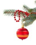 Röda julgarneringar på granträd Royaltyfri Bild