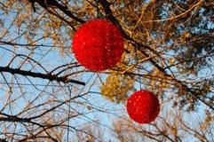 Röda julljus utomhus Fotografering för Bildbyråer