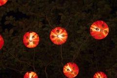 Röda kinesiska lyktor som glöder på natten på träd royaltyfri fotografi