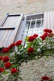 Röda klättringrosor framme av ett landsfönster Royaltyfria Bilder