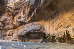 Röda klippor ovanför den jungfruliga floden Arkivfoto