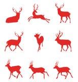 Röda konturer av hjortar också vektor för coreldrawillustration Royaltyfri Foto