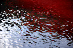 Röda krusningar för blod på vatten Fotografering för Bildbyråer