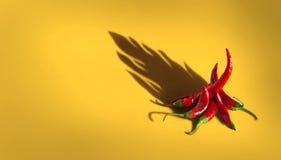 röda kyliga varma peppar Arkivfoto