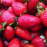 Röda läckra jordgubbar Royaltyfria Foton
