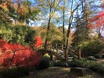 Röda lönnar bredvid en bro i parkerar i Richmond, Virginia arkivbild