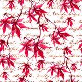 Röda lönnlöv med handskriven text mönstrad seamless tappning vattenfärg Royaltyfri Foto