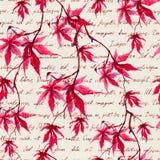 Röda lönnlöv med skriftlig text för hand seamless modell vattenfärg royaltyfri foto