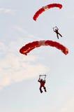 röda landninglions Royaltyfria Bilder