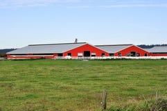 Röda lantbrukarhem Arkivbilder