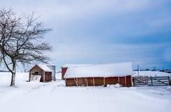 Röda lantgårdbyggnader i vinter arkivfoto