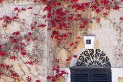 Röda medelhavs- blommor som omger överkanten av ett fönster Arkivbild