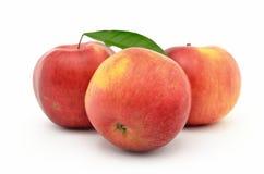 Röda mogna äpplen Jonagold som isoleras på vit bakgrund Arkivfoton