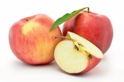 Röda mogna äpplen Jonagold som isoleras på vit bakgrund Arkivbild