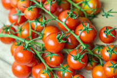 Röda mogna Cherry Tomatoes Arkivbild