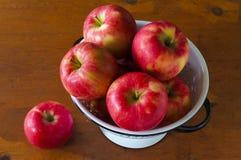 Röda mogna Honeycrisp äpplen Arkivbild