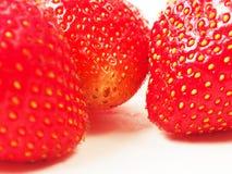 Röda mogna jordgubbar arkivfoton