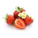 röda mogna jordgubbar Arkivbild