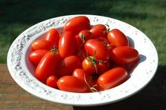 Röda mogna tomater i en portionbunke Fotografering för Bildbyråer